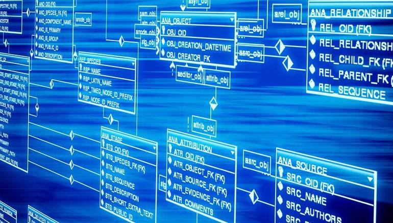 Software de Casino en Línea